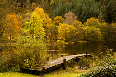 Autumn in the Trossachs (pixellesley) Tags: autumn colours trossachs loch lochan scotland reflections water trees pier landscape lesleygooding lake