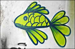 Coimbra 2016 - Sociedade de Porcelanas 05 (Markus Lske) Tags: portugal coimbra sociedadedeporcelanas art arte kunst graffiti graffito bild streetart urbanart urban street strase lueske lske