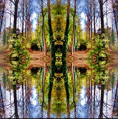 Imaginary landscape (april-mo) Tags: imaginary symmetrical art creative dreamscape