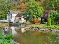 Am Schwanenweiher (menzelhd) Tags: schwan weiher teich kurpark bad bertrich eifel rheinlandpfalz restaurant gastronomie staatsbad kur kurort