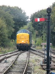Deltic 55019 trundles into North Weald, EOR Epping Ongar Railway 08.10.16 (Trevor Bruford) Tags: eor epping ongar heritage railway north weald br blue train diesel locomotive deltic d9019 9019 55019 royal highland fusilier napier ee english electric dps preservation society