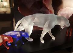 Vitrine DAUM (MAPNANCY) Tags: daum nancy vitrine tigre cristal