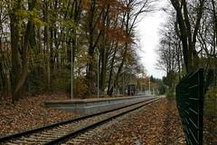 P2460472 (Lumixfan68) Tags: eisenbahn schwentinebahn bahnhaltepunkte haltepunkte bahnhöfe hein schönberg baustellen