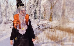 Me and my friends (drayton.miles) Tags: winter woods forest snow wizard magic wizarding magical fox snowing frost frog mesh hogwarts hufflepuff harry potter people ravenclaw second sl secondlife slytherin gryffindor