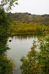 Lake Mvatn (kzoop) Tags: iceland travel vacation europe lake myvatn nature hofdi