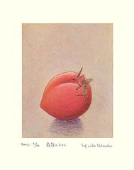 Tomato (Japanese Flower and Bird Art) Tags: flower tomato solanum lycopersicum solanaceae yuko wada modern intaglio print japan japanese art readercollection
