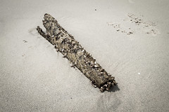 Auswahl-5366 (wolfgangp_vienna) Tags: old beach strand thailand island asia asien alt insel ko flotsam trat kut treibgut kood aophrao kokood schwemmgut kokut kohkut thesunshineresort