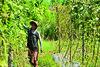 Roun March (5) (undpclimatechangeadaptation) Tags: climatechange resilience adaption womenempowerment humancapital foodsecurity farmingtechnique climatechangeadaptation napafollowup povertyreductin