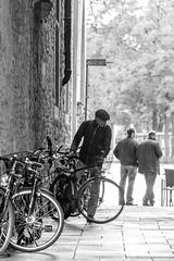 Mnster, du und deine Rder -4- (Rainer Lonsing) Tags: street rder schwarzweiss mnster