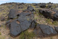 30095292 (wolfgangkaehler) Tags: old rock asian ancient asia desert mongolia centralasia petroglyph gobi blackmountains petroglyphs ibex mongolian gobidesert southernmongolia