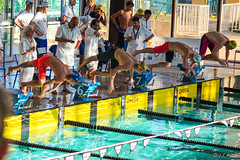 Interclubs Antibes 2015 (moutoons) Tags: swimming natation champion swimmingpool swimmer antibes nageur championnat comptition interclubs nageuse charlottebonnet annasantamans saintraphalnatation