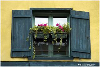 Amiens - Fenêtre fleurie dans le quartier Saint Leu