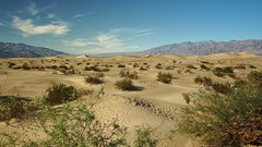A65V2 159 (2) Death Valley N.P. (Allen Woosley) Tags: california death springs valley np stovepipe a65v2