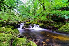 Bodmin Moor (a3aanw) Tags: longexposure trees water forest river landscape waterfall cornwall landschap nikond800 zomervakantie2014