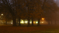 _C0A5046REWS Fog and Fallen Leaves, Jon Perry - Enlightenshade, 2-11-15 zaq (Jon Perry - Enlightenshade) Tags: park autumn trees london fall fog dawn foggy autumnleaves chiswick w4 inthepark treesinfog jonperry foggydawn enlightenshade arranginglightcom