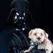Darth Vader + Sprocket