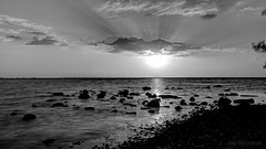 Following the Light (JDS Fine Art Photography) Tags: light sunset sea bw nature water monochrome beauty landscape photographer dreamy inspirational sunrays magical soe elegance oceanscape