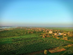 Sunrise over the Green Fields of Luxor (Travel to Eat) Tags: balloons dawn morninglight earlymorning egypt luxor hotairballoons nileriver lushgreenfields