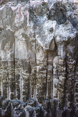 Jusangjeolli- columns (Eightymm) Tags: korea jeju mhexanon mmount jusangjeolli sonya7 90mmhexanonf28