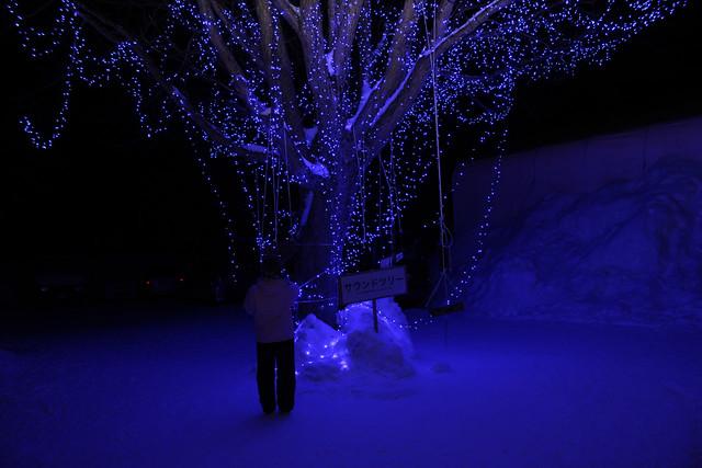 賑やかな会場から少し離れたところに、青い星屑のような光にラ。|十和田湖冬物語