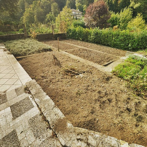 What kept me busy the last few days... the forest of weeds was pulled out. A few more runs and the vegetable garden will be ready for autumn planting. #hotel #garden #hotellucija #gardening #hotelgarden #vegetables #socavalley #slovenia
