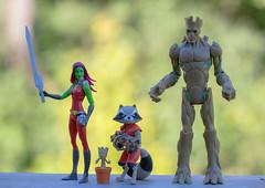 Guardians of the Galaxy (atari_warlord) Tags: actionfigure babygroot gamora groot guardiansofthegalaxy hasbro marvel marvelcomics rocketraccoon