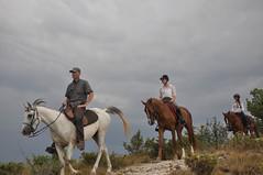Centre de Randonnée Equestre JANSSAUD (Alpes de Haute Provence) Tags: 04 alp alpe alpes alpeshauteprovence alpesprovence alpesdehauteprovence animal fontienne forcalquier france hauteprovence hauteprovenceluberon provence provencealpescôtedazur centreéquestre cheval horizontale randonnée randonnéeéquestre rocherdesmourres