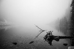 Lake Agnes in the mist (julieshanks1) Tags: lake agnes canada banff national park louise mist holiday foggy fog landscape nature