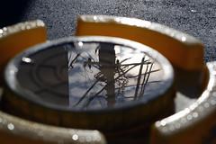 (  / Yorozuna) Tags:  reflection     puddle   aftertherain  water   silhouette  fluctuation     utilitypole electricline electricwire telegraphpole electriccable   sunrise  light  wakamatsukawada  shinjukuward  tokyo japan pentaxautotakumar55mmf18