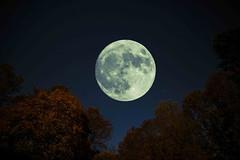 Super Moon... (w3inc / Bill) Tags: w3inc nikon d610 supermoon composite chestercounty sliderssunday hss