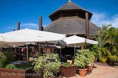 Tenerife-Oct16-462.jpg (jolicoeur71) Tags: espagne canaries tenerife le le