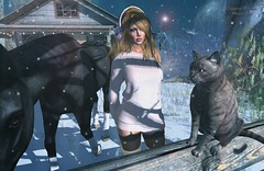Snapshot_first_snow_with_friends (jeffresident) Tags: lara jeff jeffferie winter snow light outdoor shadow mesh maitreya catwa blond stars horse nylons boots beauty cat porterislands wewanttobefree