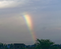 NICE Road Rainbow (code_martial) Tags: d3300 1685mmf3556gvr ooty2016 shotbynazia