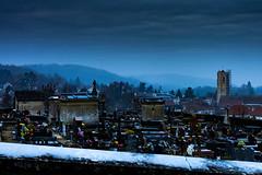 L'hiver arrive (Meculda) Tags: fleurs eglise brouillard ciel bleue froid glace gel architecture batiment village