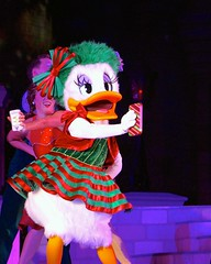 Phones for you... (jordanhall81) Tags: daisy duck donald iphone character dancer entertainment show live stage castle party mickeys very merry christmas mvmcp m3c most merriest celebration magic kingdom holiday mk vacation walt disney world wdw resort theme park amusement orlando lake buena vista lbv florida