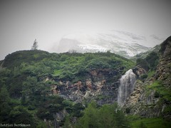 Lost Tree (katrienberckmoes) Tags: lost pine tree waterfall alps landscape rauris valley vultures austria beautiful snowy mountain background
