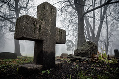 Foggy mornings are for digging... (AxelBergeron) Tags: vert graveyard cemetery cimetire mort fog foggy brouillard morning matin fall winter hiver automne morbid morbide lugubre dark tomb tombe tombstone pierretombale dead death sonya5000 a5000 sel1650