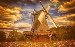 Windmill (Delbrücker) Tags: nature windmill natur windmühle nikkor2470 nikond610