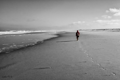 _DSC4058_B&w-P (Carlos FZ) Tags: white black blanco praia portugal mar y negro carlos playa paisaje da fz aveiro atlantico forteza vagueira