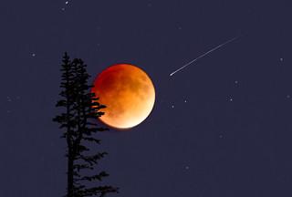 Blood Moon-Explored