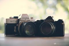Film Minolta & Pentax (kylevanhelden) Tags: camera film 35mm vintage 50mm minolta pentax bokeh f14 58mm sv srt101 rokkor bokehwhore