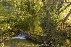 La Teysonne (Rivire de la commune de Mirmande) / Teysonne river (Mirmande Village) (Laurence TERRAS) Tags: november autumn france green nature water leaves automne river leaf eau novembre vert rivire feuilles feuille drme mirmande