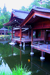 Misogi Shinto shrine (sonica@2006) Tags: beauty japan swimming was pond shrine stage sony it noh carps opening really shinto which fully elegantly misogi rx100 thejapanesestyle