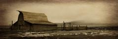 The Moulton Barn (gebodogs) Tags: texture abandoned sepia jackson historic vacant wyoming 56 grandtetonnationalpark mormonrow tetoncounty wornandweathered moultonbarn ipiccy 115in2015 exploredec82015182