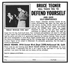 DEFENSE PDF BRUCE SELF TEGNER