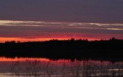 Sunset on a lake in southern Finland (Sirke Vaarma) Tags: kilpijarvi lake jrvi sunset auringonlasku taivas sky water vesi lila violetti violet