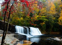 Hooker Falls (ArmyJacket) Tags: northcarolina blueridge appalachianmountains mountains westernnc nc dupontstateforest hookerfalls statepark waterfall river water outdoors nature landscape fall autumn