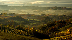 Autumn in the hills (rinogas) Tags: rinogas italy piemonte langhe unesco alba novello monforte