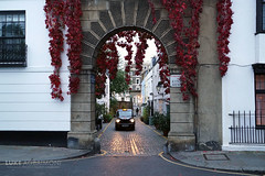 Taxi in Archway - Kynance Mews - Kensington - London (Luke Agbaimoni (last rounds)) Tags: taxi taxis arch archway autumn leaves virginia creeper london kensington chelsea twilight city street streetphotography