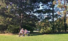 Happy Bench Monday! (Trinimusic2008 - stay blessed) Tags: trinimusic2008 judymeikle nature bench hbm park trees sky couple toronto to ontario canada
